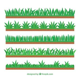 Ensemble de pelouse et des arbustes