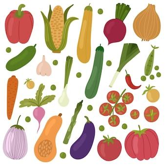 Ensemble de peper de légumes