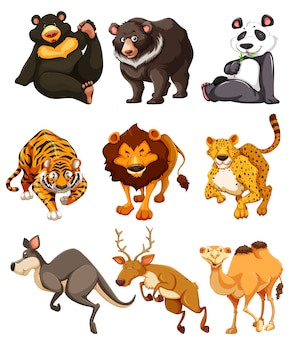 Ensemble de personnage animal sauvage
