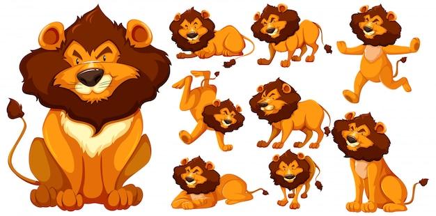 Ensemble de personnage de dessin animé de lion