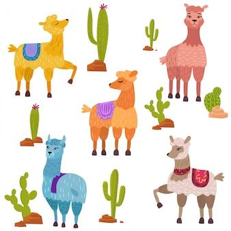 Ensemble de personnages de lamas dessin animé mignon avec cactus.