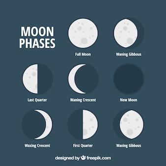 Ensemble de phases de lune plate