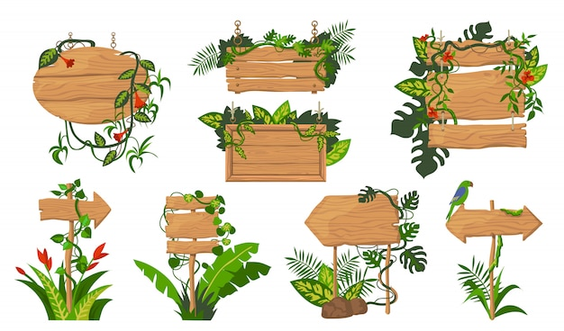 Ensemble de planches en bois jungle