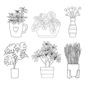 Ensemble de plante domestique avec collection de pot