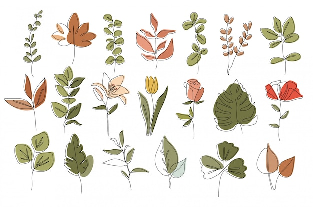 Ensemble de plantes, dessin au trait unique, feuilles tropicales, ensemble de plantes botaniques isolé