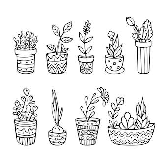 Ensemble de plantes dessinées à la main dans des pots isolés sur fond blanc