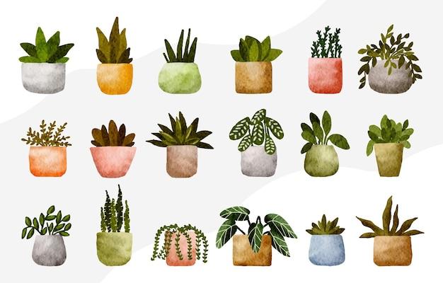 Ensemble de plantes d'intérieur mignonnes isolées dans l'illustration de pots de fleurs