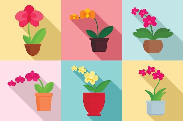 Ensemble de plantes d'orchidées, style plat