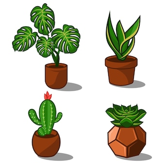 Ensemble De Plantes Vecteur Premium