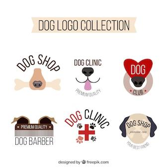 Ensemble plat de six chiens logotypes