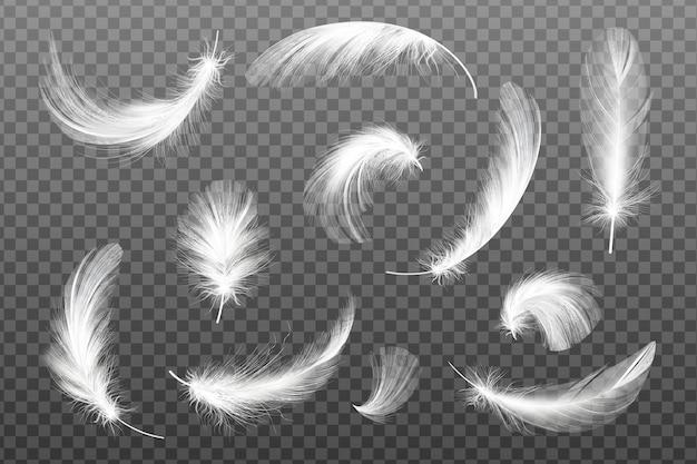 Ensemble de plumes blanches réalistes volantes de différentes formes.