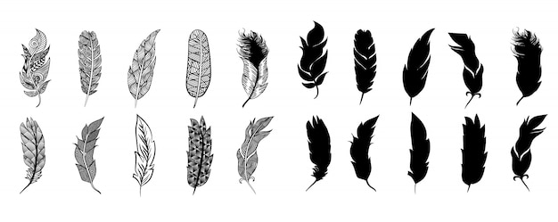 Ensemble de plumes collection clipart