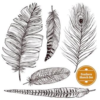 Ensemble de plumes dessinées à la main