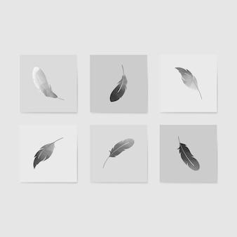 Ensemble de plumes flottantes