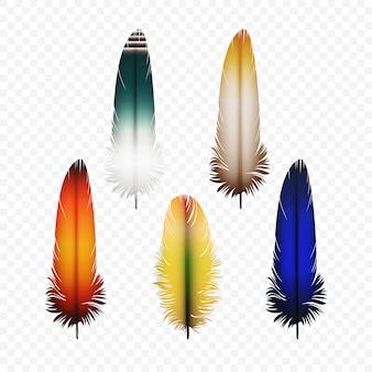 Ensemble de plumes isolées