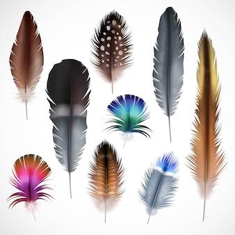 Ensemble de plumes réalistes