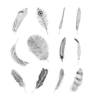 Ensemble de plumes texturées