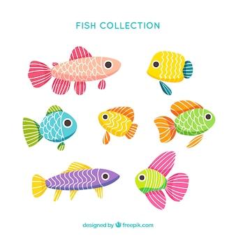 Ensemble de poisson avec de grands yeux