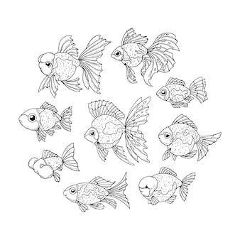 Ensemble de poisson rouge