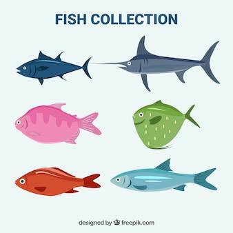 Ensemble de poissons colorés dans un style plat