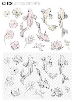 Ensemble de poissons koi. skrtch dessiné à la main. illustration vectorielle