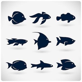 Ensemble de poissons sihlouette
