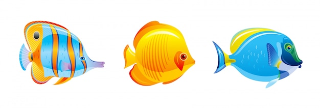 Ensemble de poissons tropicaux. icônes d'aquarium ou de mer vectorielles. animaux sous-marins des récifs coralliens. collection de vie océanique isolée.