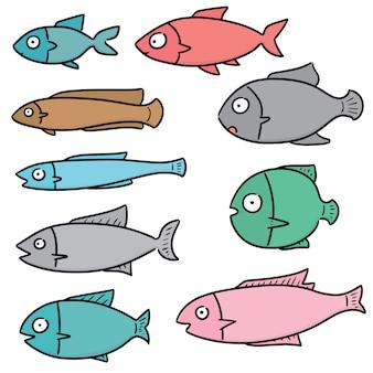 Ensemble de poissons