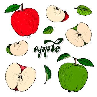 Ensemble de pommes et feuilles dessinées à la main