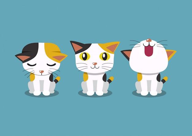Ensemble de poses de chat de personnage de dessin animé