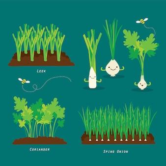 Ensemble de potager. illustration de dessin animé de nourriture biologique et saine.