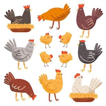 Ensemble de poule, oiseau, coq, poulet. animaux domestiques. ferme, campagne