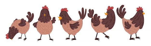 Ensemble de poulet animal isolé