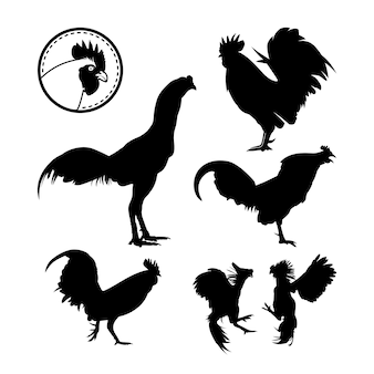Ensemble de poulet coqinspiration logo silhouette rooster crow fighting rooster chicken head