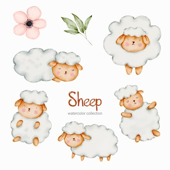 Ensemble de poupée de mouton aquarelle