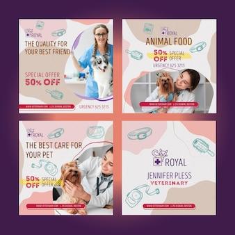 Ensemble De Publications Instagram Vétérinaires Vecteur gratuit