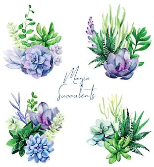 Ensemble de quatre bouquet de plantes succulentes aquarelle brillant