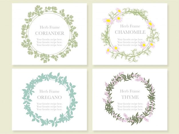 Ensemble de quatre cadres avec diverses herbes: coriandre, camomille, origan et thym. illustration.