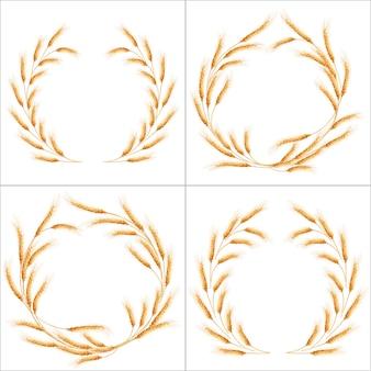 Ensemble de quatre épis de blé détaillés.