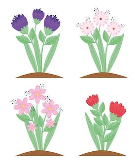 Ensemble de quatre fleurs et feuilles illustration de plantes de saison de printemps