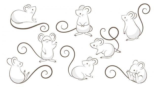 Ensemble de rats dessinés à la main, souris dans différentes poses
