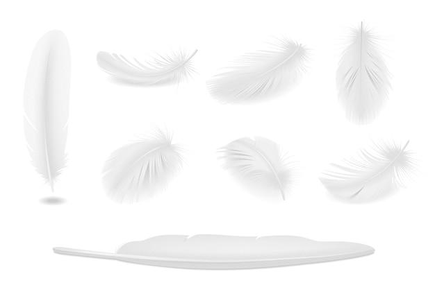 Ensemble réaliste de plumes d'oiseaux propres blancs isolés