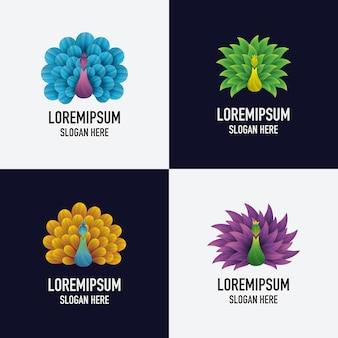 Ensemble, de, résumé, coloré, paon, logo, conception, illustration