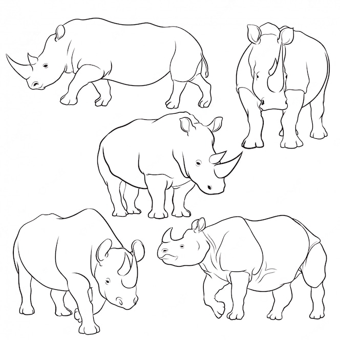 ensemble de rhinocéros dessinés à la main