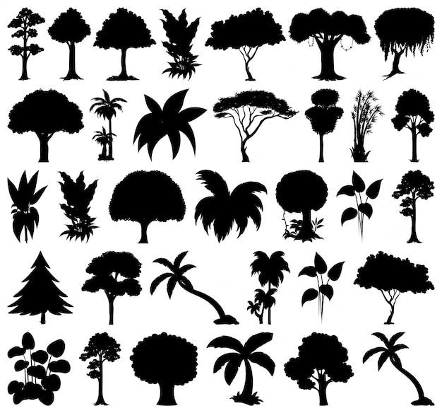 Ensemble de silhouette plante et arbre