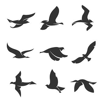 Ensemble de silhouettes d'oiseaux en mouvement sur fond blanc