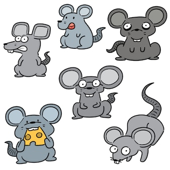 Ensemble de souris