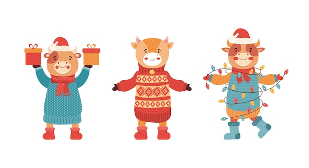 Ensemble de taureaux de bébé drôle de bande dessinée lors d'une fête du nouvel an. mascotte du nouvel an 2021. personnage animal mignon en vêtements d'hiver avec cadeau et bonbons. vache, buffle, veau, bœuf. joyeux noël illustration
