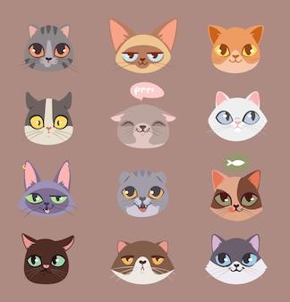 Ensemble de têtes de chats isolés sur brun