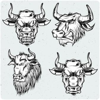 Ensemble de têtes de taureau